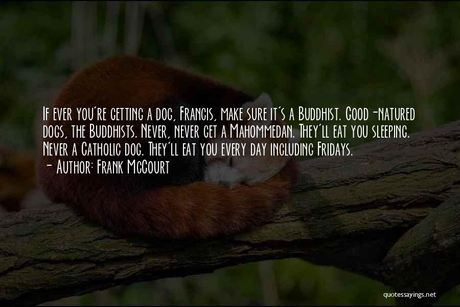 Frank McCourt Quotes 357025