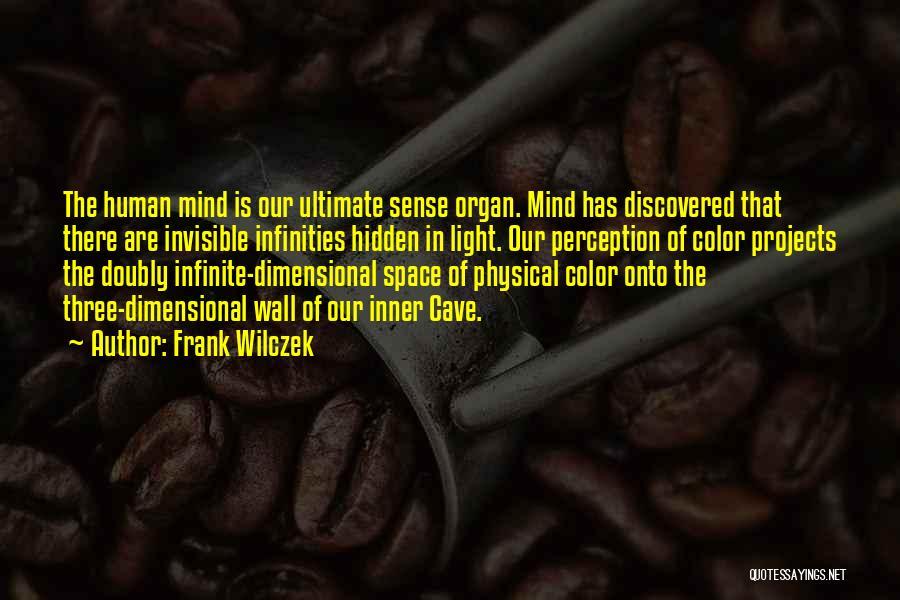 Frank Wilczek Quotes 1226743