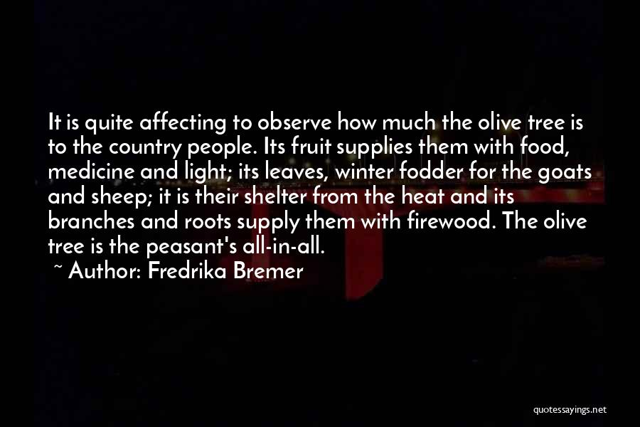 Fredrika Bremer Quotes 532356
