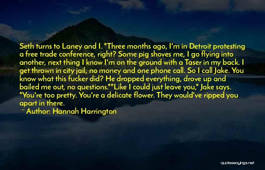 Free Flying Quotes By Hannah Harrington