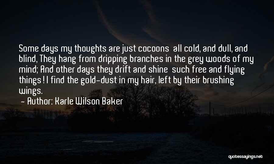 Free Flying Quotes By Karle Wilson Baker
