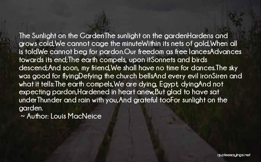 Free Flying Quotes By Louis MacNeice
