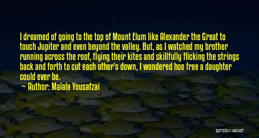 Free Flying Quotes By Malala Yousafzai