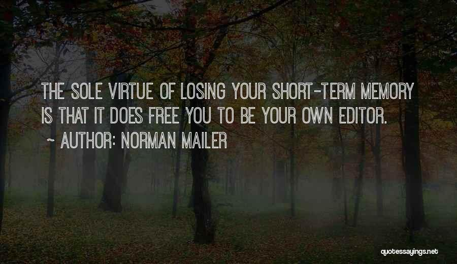Free Term Quotes By Norman Mailer