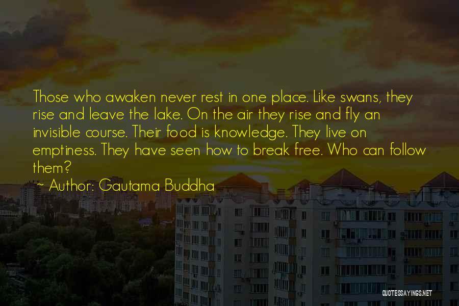 Free To Live Quotes By Gautama Buddha