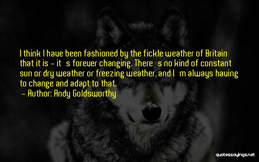 Freezing Quotes By Andy Goldsworthy