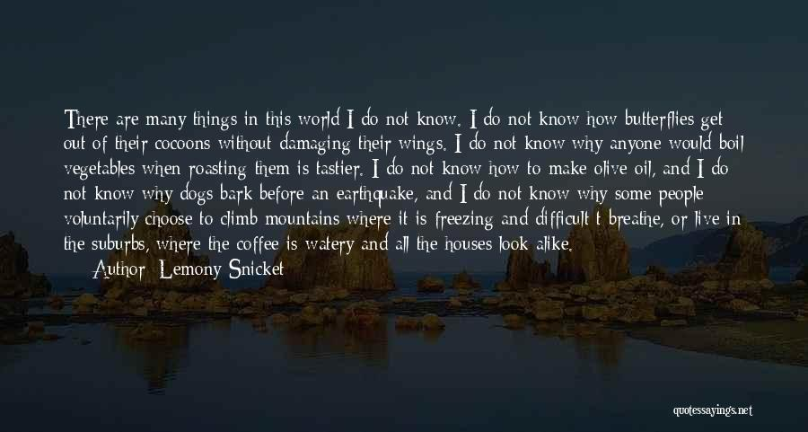 Freezing Quotes By Lemony Snicket