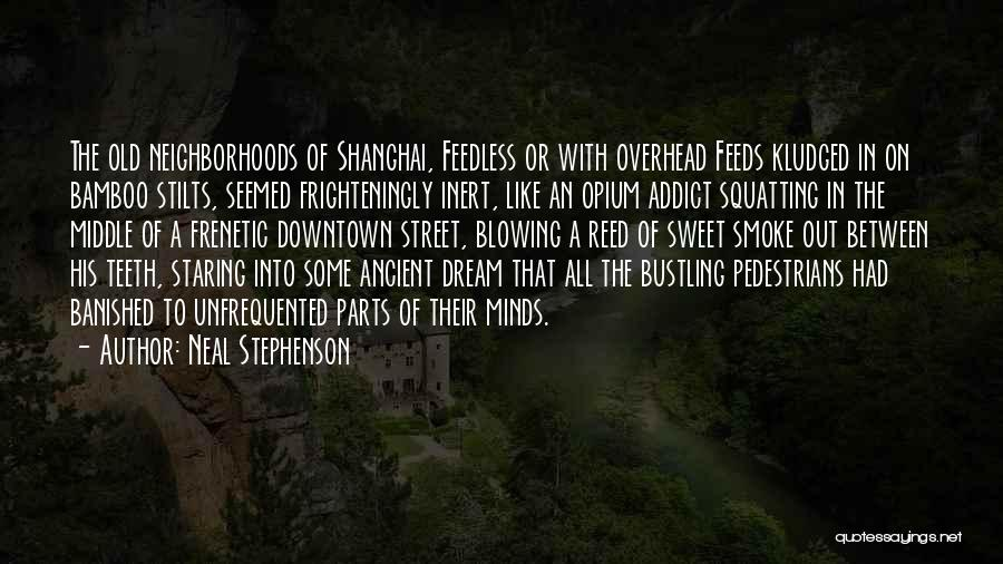 Frenetic Quotes By Neal Stephenson