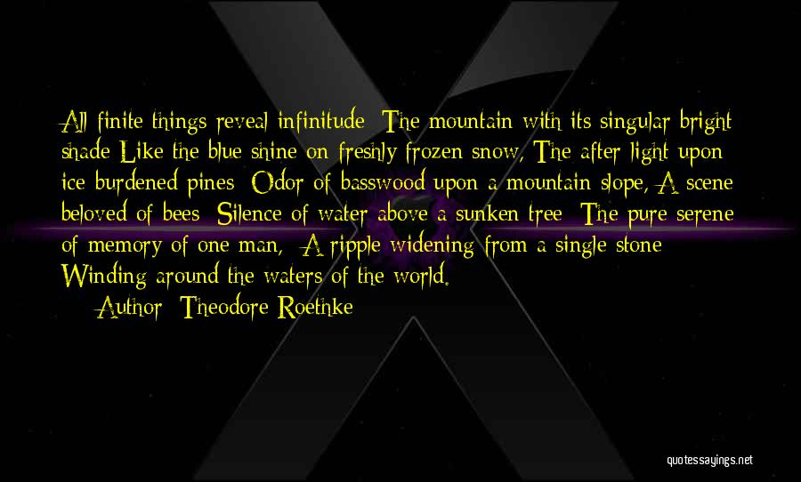 Freshly Quotes By Theodore Roethke