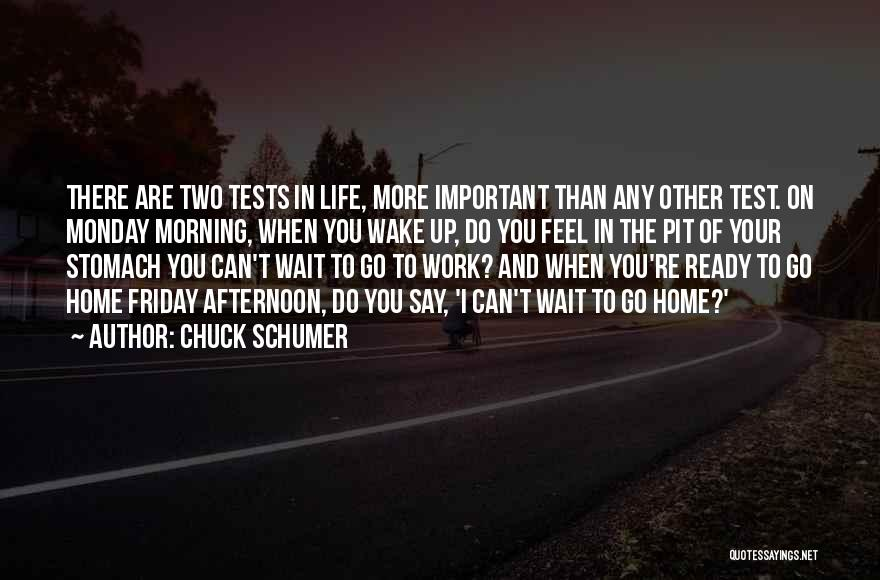 Friday Work Quotes By Chuck Schumer