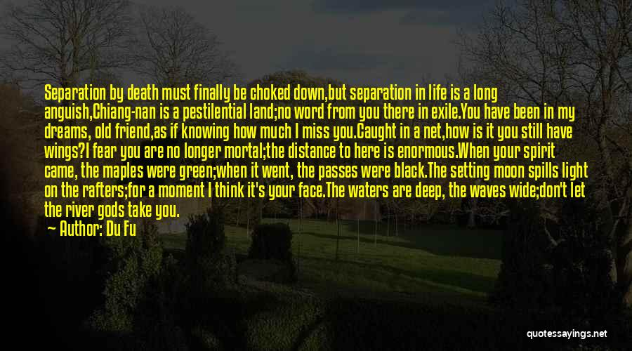 Friend Till Death Quotes By Du Fu