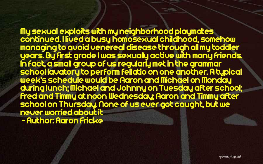 Friends And Having Fun Quotes By Aaron Fricke