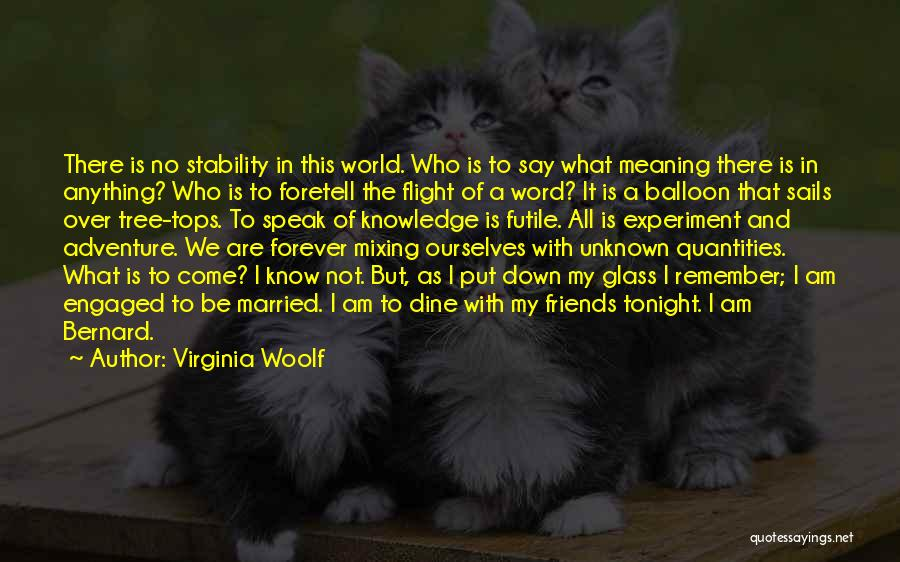 Friends Are Not Forever Quotes By Virginia Woolf