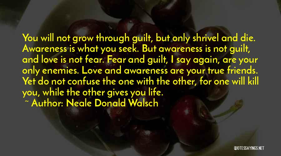 Friends But Love Quotes By Neale Donald Walsch