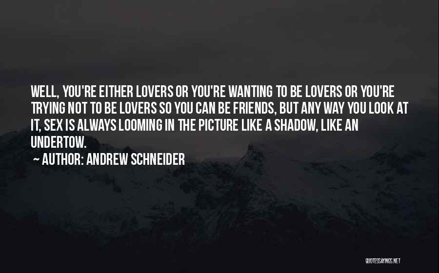 Friends Can Be Lovers But Lovers Can't Be Friends Quotes By Andrew Schneider
