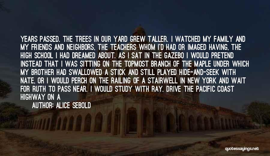 Friends From School Quotes By Alice Sebold