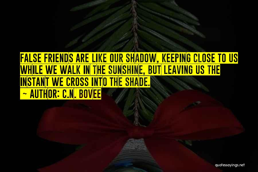 Friends Leaving U Out Quotes By C.N. Bovee