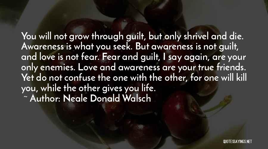Friends Love Life Quotes By Neale Donald Walsch
