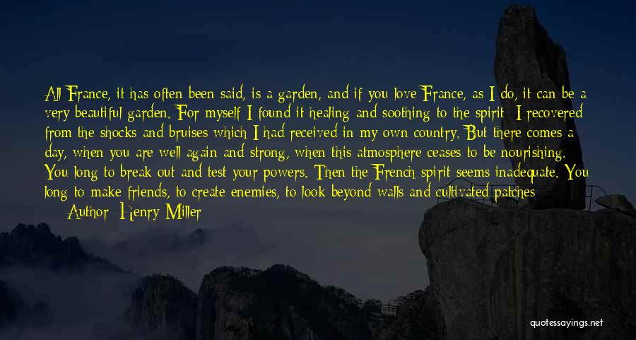 Friends Make Your Day Quotes By Henry Miller