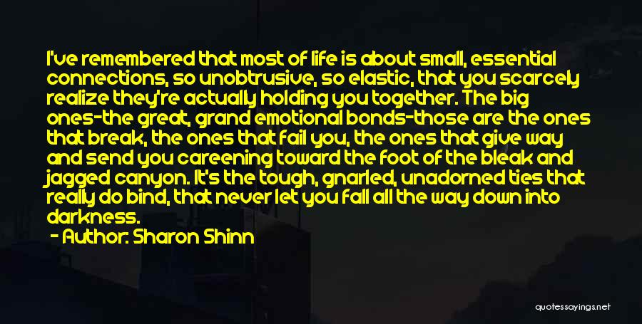 Friends Never Give Up Quotes By Sharon Shinn