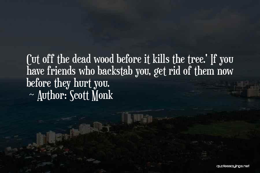 Friends Who Hurt You Quotes By Scott Monk
