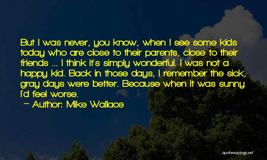 Friends Who Never See Each Other Quotes By Mike Wallace