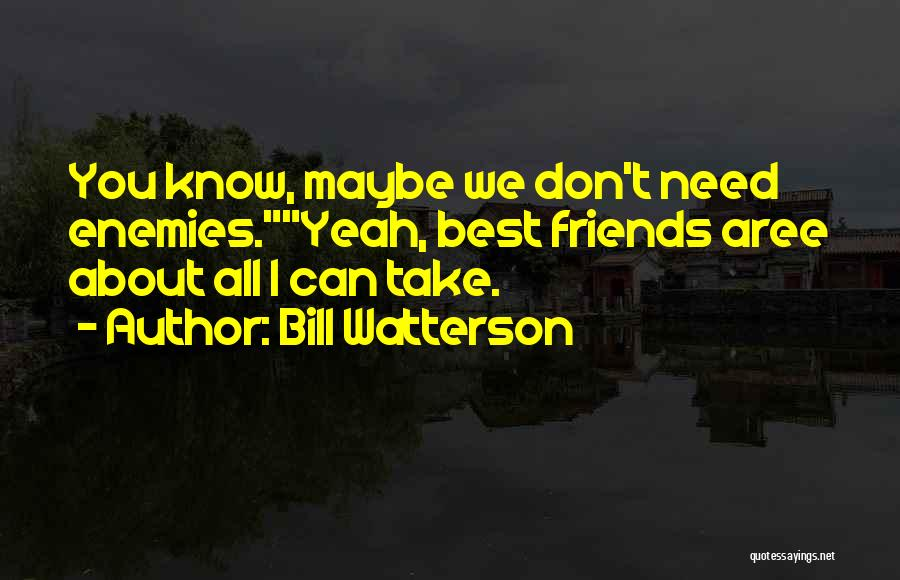 Friends You Don't Need Quotes By Bill Watterson