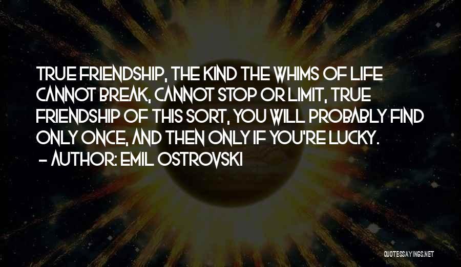Friendship Break Quotes By Emil Ostrovski