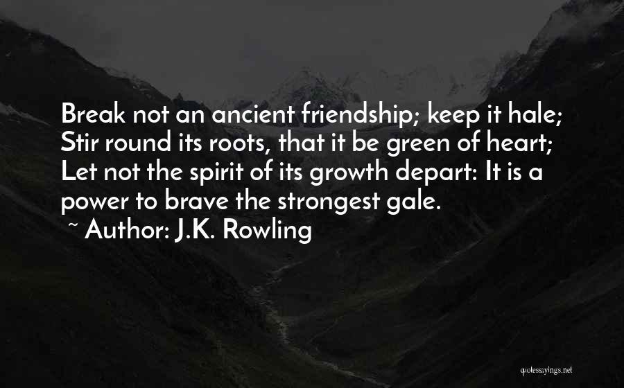 Friendship Break Quotes By J.K. Rowling