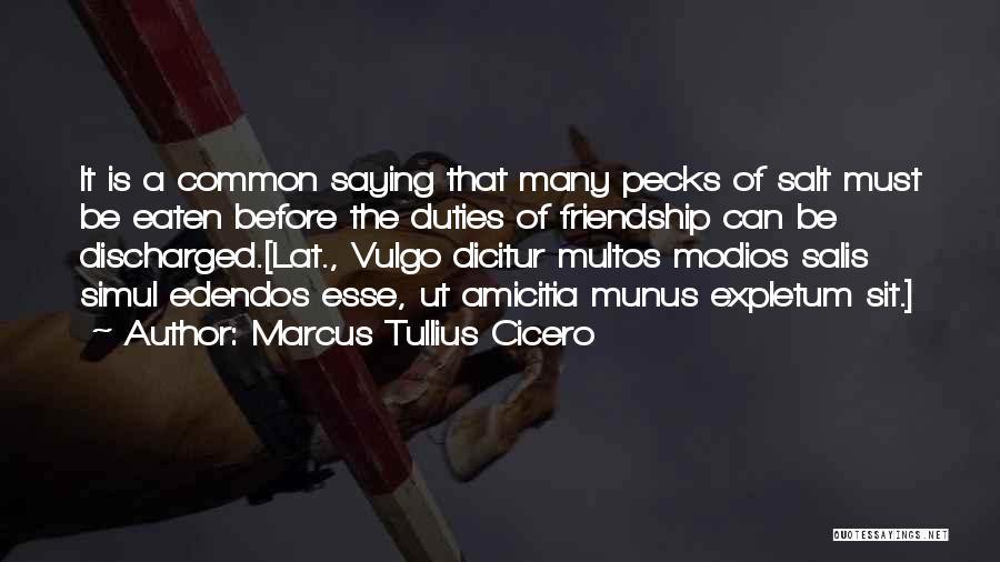 Friendship Saying Sorry Quotes By Marcus Tullius Cicero