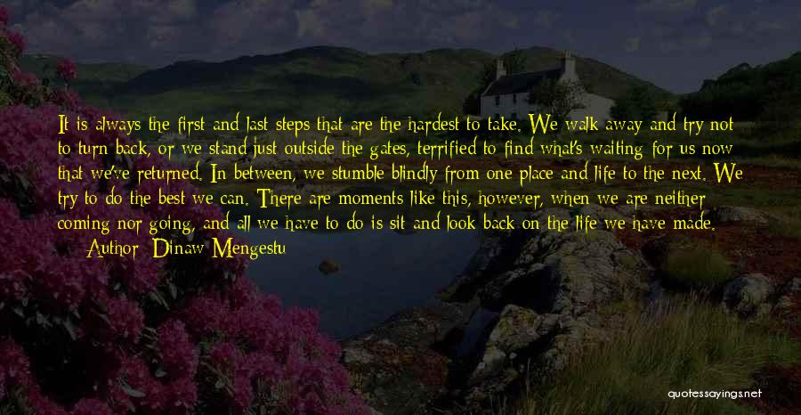 From First To Last Quotes By Dinaw Mengestu