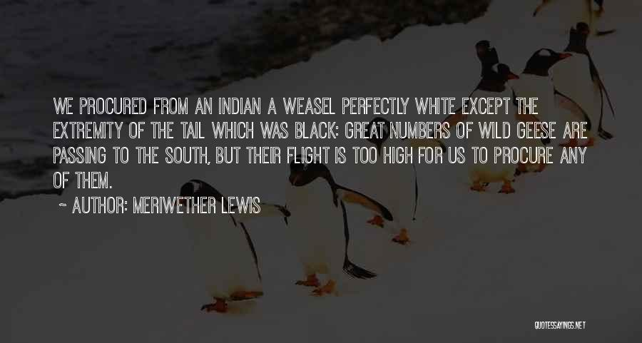 From Quotes By Meriwether Lewis
