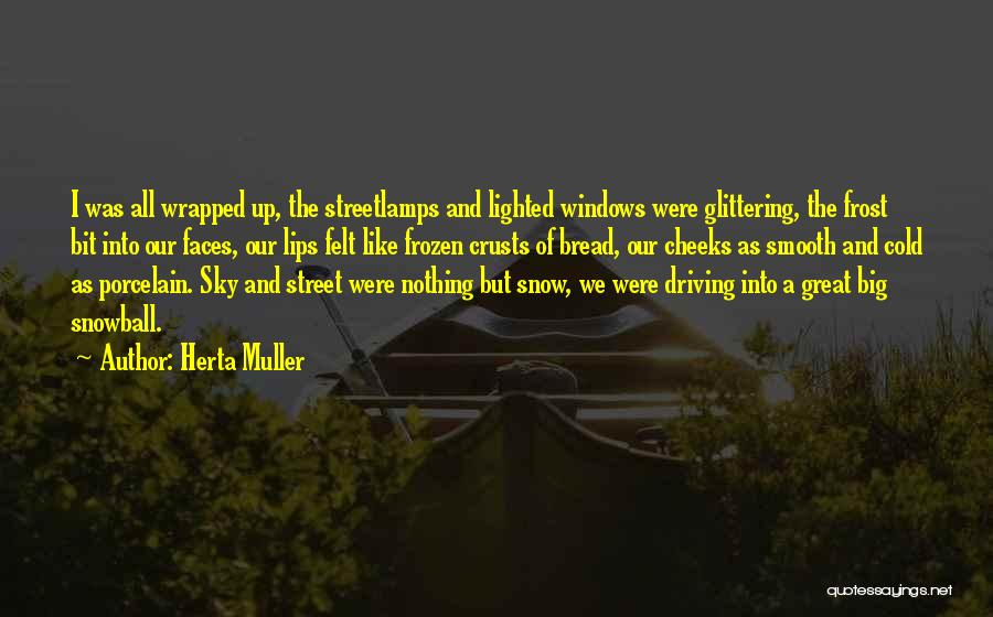 Frost Windows Quotes By Herta Muller