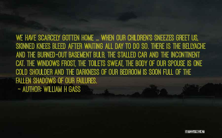 Frost Windows Quotes By William H Gass