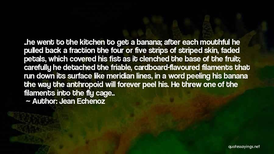 Fruit Fly Quotes By Jean Echenoz