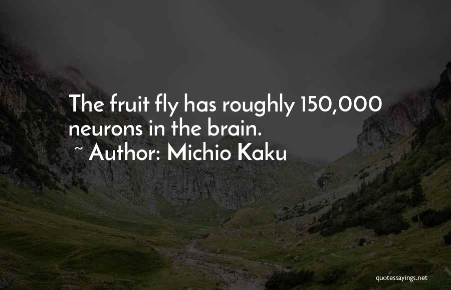 Fruit Fly Quotes By Michio Kaku