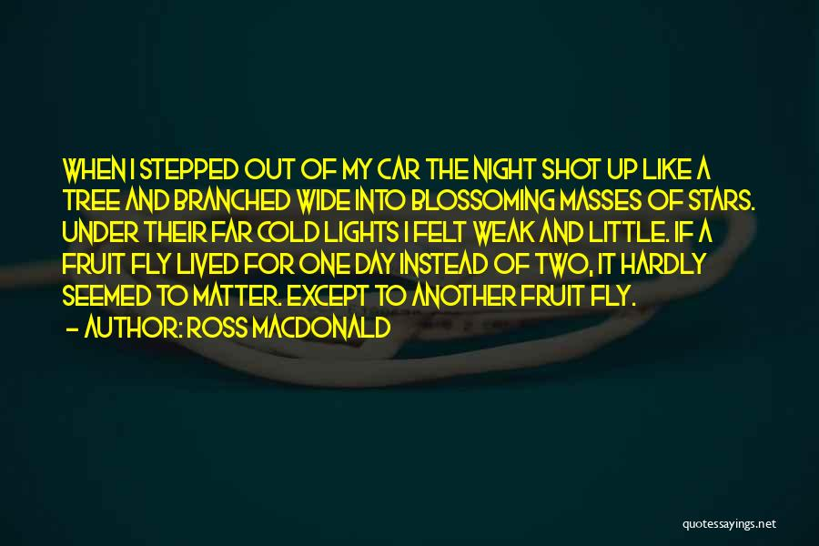 Fruit Fly Quotes By Ross Macdonald