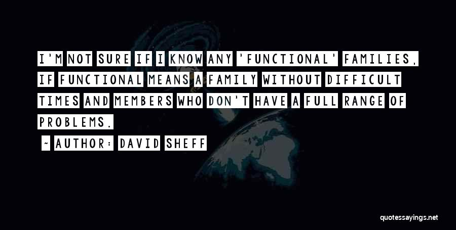 Functional Family Quotes By David Sheff