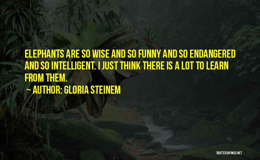 Funny But Wise Quotes By Gloria Steinem