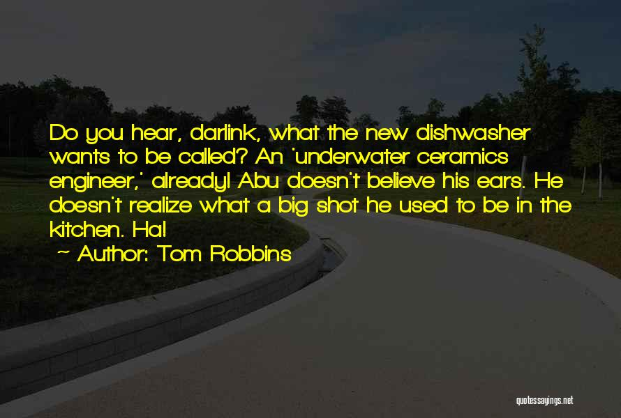 Funny Dishwasher Quotes By Tom Robbins