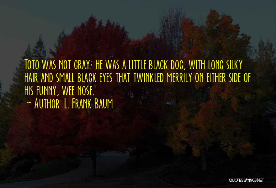 Funny Gray Hair Quotes By L. Frank Baum