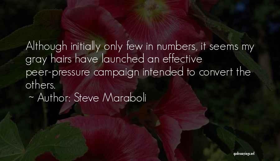 Funny Gray Hair Quotes By Steve Maraboli