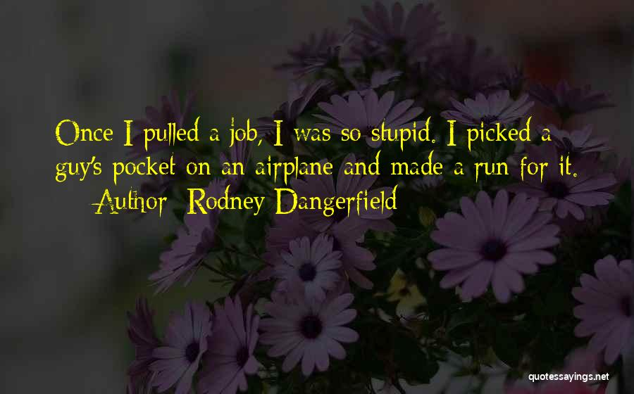 Funny Job Quotes By Rodney Dangerfield