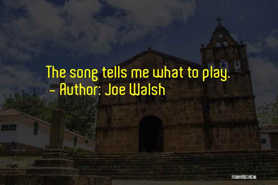 Funny Joe Walsh Quotes By Joe Walsh