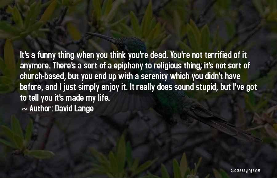 Funny Life Based Quotes By David Lange