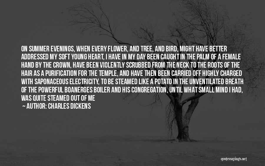 Funny Mind Quotes By Charles Dickens