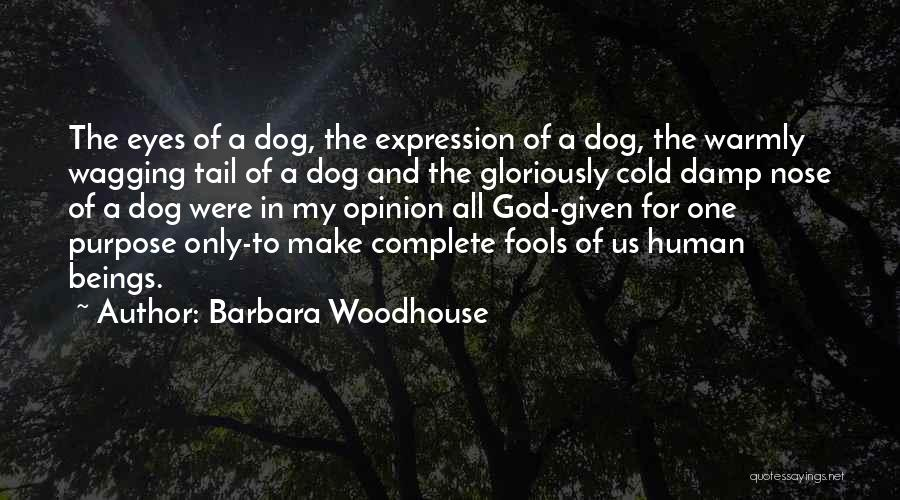 Funny My Dog Quotes By Barbara Woodhouse