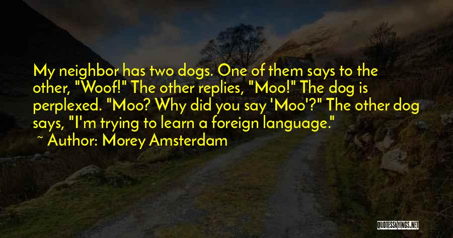 Funny My Dog Quotes By Morey Amsterdam