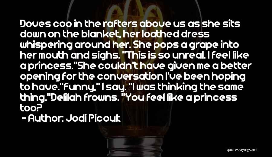 Funny Say And Quotes By Jodi Picoult