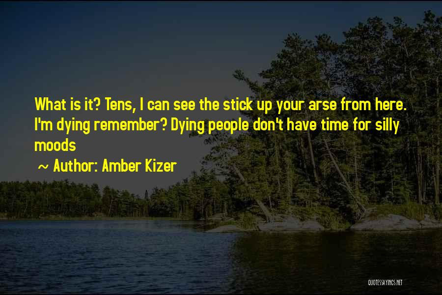 Funny Silly Quotes By Amber Kizer